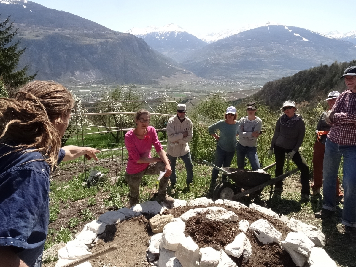 Permaculture 2017